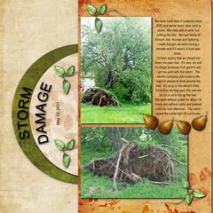 LOAD15 (Cheryl McCain) Tags: storm tree damage load15