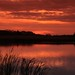2013 Horicon Marsh Sunset 108