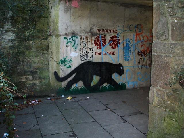 Lancaster. graffiti