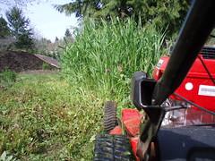 Yard Work (jedwardhager) Tags: garden mower bainbridgeisland