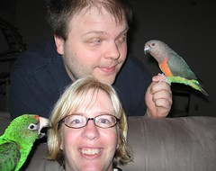 365.17 Our next Christmas card? (mersidotes) Tags: 365days wednesday day17 familyportrait lee floyd me jules poicephalus parrot redbelly jardine ilovethelookonleesface