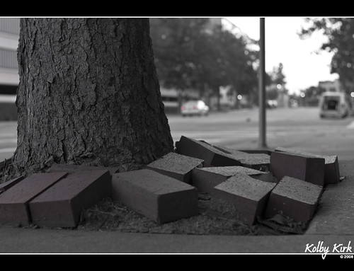 Tree vs Bricks