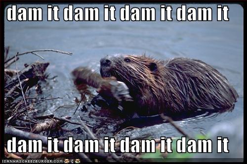 dam dam dam