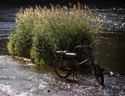 Old Moped in the River Exe