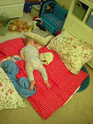 asleep on the floor