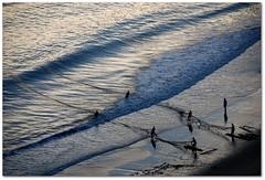 Hoje tem arrastão (*Tuvy*) Tags: sea praia beach mar fishing fishermen fortaleza pescaria arrastão tuvy duetos superdueto