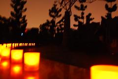 關燈後的大安森林公園