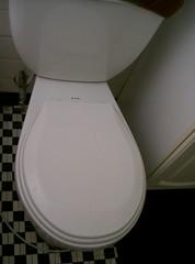 Sparkly Toilet