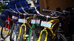 Google 牌腳踏車 (by 張家振)
