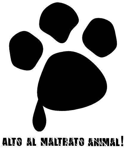 Como actuar frente a un caso de maltrato animal