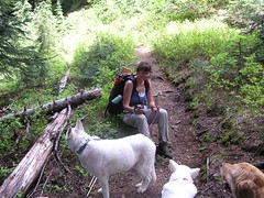 Parting company with the Bad Dogs and Joanna on the PCT