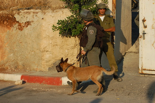 Attack dogs attend Yousef's funeral