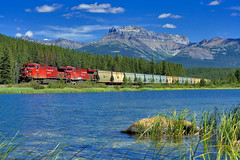 8615 at Stephen (Matthew Hicks Railway Photography) Tags: lake mountains train railway louise banff canadianpacific cp