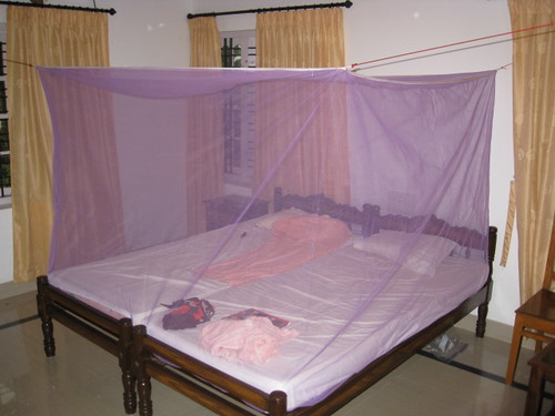 our room, our mosquito net