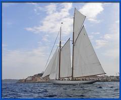Eleonora (mhobl) Tags: sailing ship sttropez regatta onlythebest onlythebestare eleonora5