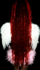 Day 285 of 365 (wisely-chosen) Tags: pink white selfportrait me wings september 2008 picnik feathered verylonghair 365days naturallycurlyhair