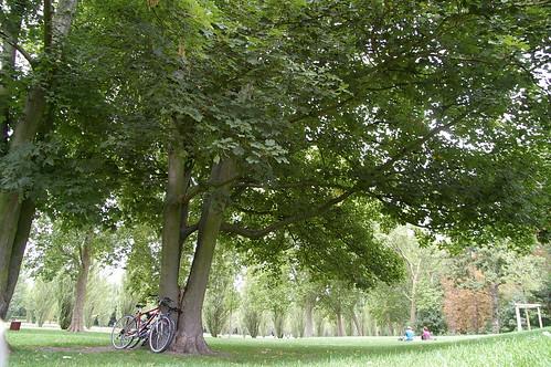 蘇鎮公園 12 - 單車也休息一下