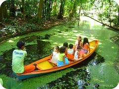 Lembrana de uma velha infncia (Mara Hermes) Tags: parque verde natureza natura bosque par belm amaznia