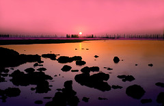 Eid sunrise! (AL zanki (d10b Q8)) Tags: pink sea orange sun reflection beach sunshine sunrise canon fishing rocks filter kuwait 1855mm cokin alzanki