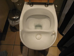 Urine diverting flush toilet in Stockholm
