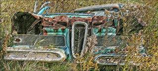 1958 Edsel: Lousy Car But Great Planter.