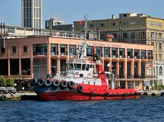 """Welcome to Istanbul"", tug ""TDI Zubeyde Ana,"" 14 September 2008 (Ivan S. Abrams) Tags: arizona turkey nikon ivan vessel istanbul getty tugboat tug nikkor abrams nikondigital bosphorus gettyimages smrgsbord d300 tucsonarizona workboat nikondx 12608 nikonprofessional onlythebestare ivansabrams trainplanepro nikond300 pimacountyarizona safyan arizonabar arizonaphotographers ivanabrams cochisecountyarizona servicecraft gettyimagesandtheflickrcollection copyrightivansabramsallrightsreservedunauthorizeduseofthisimageisprohibited tucson3985gmailcom ivansafyanabrams arizonalawyers statebarofarizona californialawyers copyrightivansafyanabrams2009allrightsreservedunauthorizeduseprohibitedbylawpropertyofivansafyanabrams unauthorizeduseconstitutestheft thisphotographwasmadebyivansafyanabramswhoretainsallrightstheretoc2009ivansafyanabrams abramsandmcdanielinternationallawandeconomicdiplomacy ivansabramsarizonaattorney ivansabramsbauniversityofpittsburghjduniversityofpittsburghllmuniversityofarizonainternationallawyer"