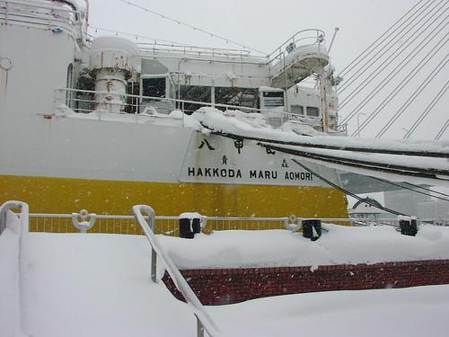 八甲田丸/Hakkoda-maru