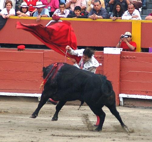 Fernando Roca Rey en Lima