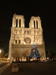 rotated_cropped_wb_notre_dame_4883