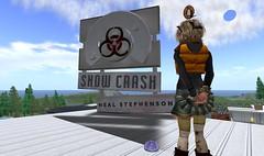 SnowCrash @ NWN Land