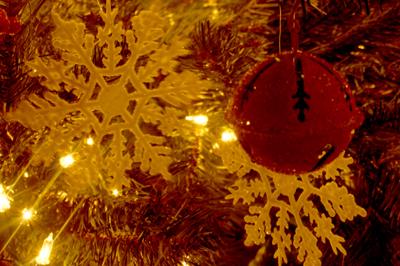 ornament DSC02968