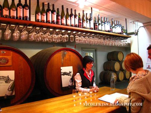 wine tasting session