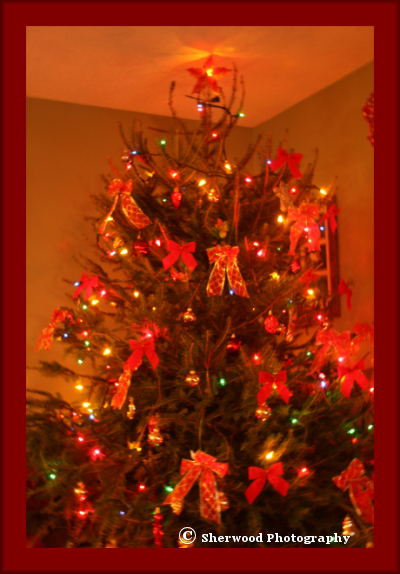 ourchristmastree