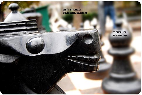日内瓦大学校园的国际象棋