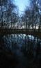 Flyvergraven (Nektos) Tags: trees panorama white black cold reflection water clouds reflections denmark iceblue jylland canondigitalixus70 vetorama flyvergraven