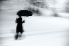 Snowed (Caballerophotos) Tags: bw snow blur göteborg sweden nieve shapes movida formas suecia d300 gothemburg gotemburgo miradafavorita