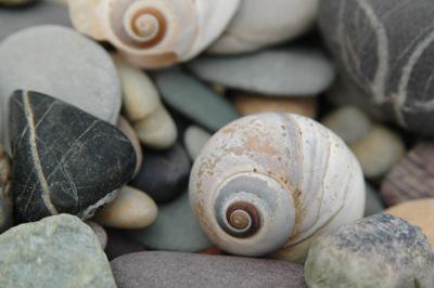 seasky3_web