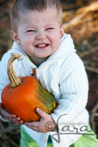 Sophie pumpkin