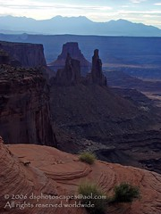 Washer Woman Arch, Canyonlands National Park, UT (dsphotoscapes) Tags: travel cliff usa art sunrise landscape landscapes utah nationalpark arch desert canyon canyonlandsnationalpark coloradoriver canyonlands moab redrock nationalparks giclee utahlandscapes utahnationalparks gicle washerwomanarch dsphotoscapes