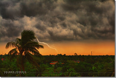 Storm is Coming (Shabbir Ferdous) Tags: summer sky cloud storm art nature rain photographer wind palma bangladesh thunder vento tempesta dinajpur bangladeshi nubi fulmine fulmini canonef50mmf18ii canoneosrebelxti anawesomeshot shabbirferdous wwwshabbirferdouscom shabbirferdouscom
