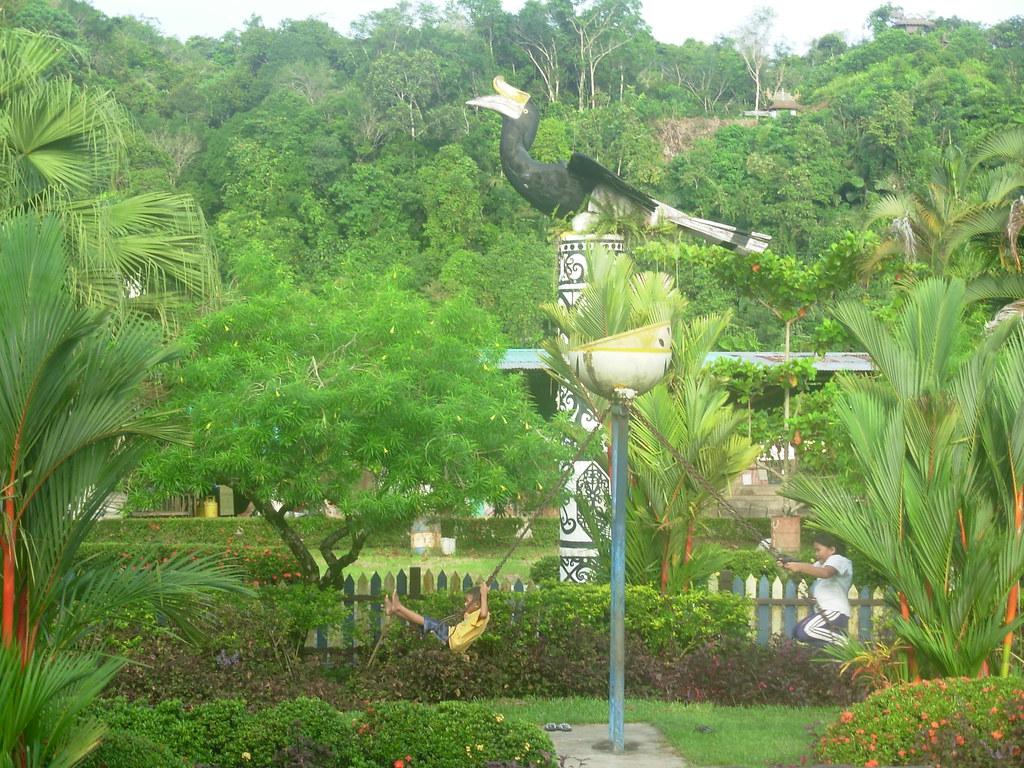 Sarawak-Belaga (346)