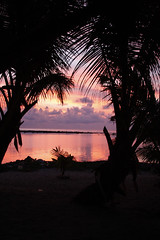 sunrise on Tobacco Caye