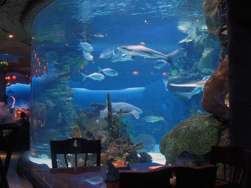 The Aquarium Restaurant