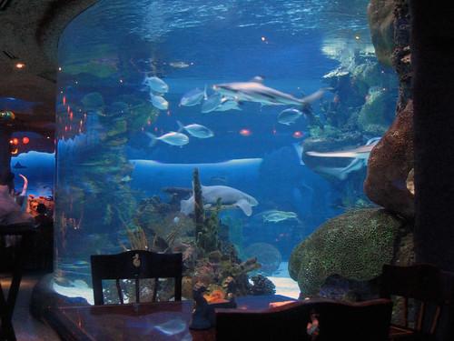 The Aquarium Restaurant