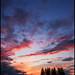 Mallusjoki Sky