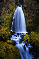 I. VELVETY CASCADE .I (donpar) Tags: summer mountains fern nature water canon flow waterfall moss movement rocks exposure pacific northwest stones smooth columbia velvet upper twig gorge filters refreshing cascade multnomah wahkeena donpar donparimages