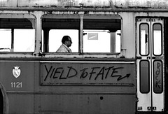 """yield to fate"" 1121 # 3 (manuel cristaldi) Tags: travel blackandwhite bw italy musician film 35mm blackwhite noiretblanc trix pole cuneo soe trolleybus outoforder minox35gt blueribbonwinner 1025favorites mostexcellent supershot views300 rockwillneverdie outstandingshots greatpixgallery10faves golddragon mywinners abigfave impressedbeauty manuelcristaldi citrit excellentphotographer feltlife theunforgettablepictures overtheexcellence coolestphotographers maurosabbione theperfectphotographer dragongold myabsolutefavoritepictures myverypersonnalbw mostexcellentinbw noirecafe"