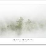 Mystical Mist