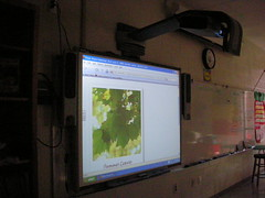 SMART Board - Installed and in Operation