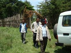 Mulusayoo entrance